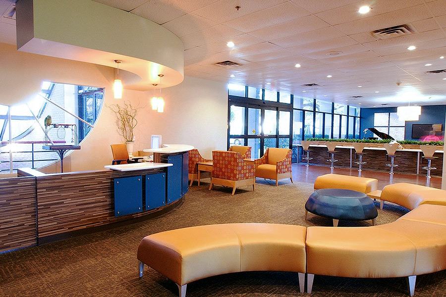 Lobby area of a commercial building with modern leather benches and chairs